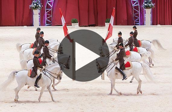 Spaanse Rijschool Video